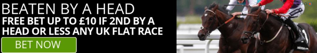 Winner horse race