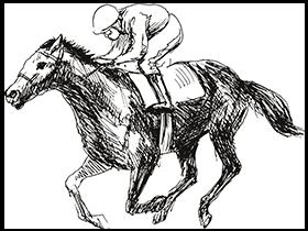 horse-hurdle