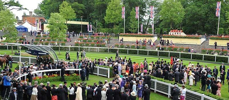 Horse-racing-in-media