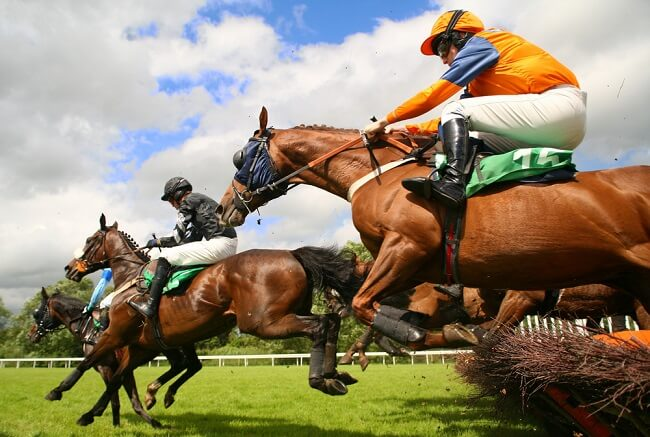 Grand National Sign up Offers