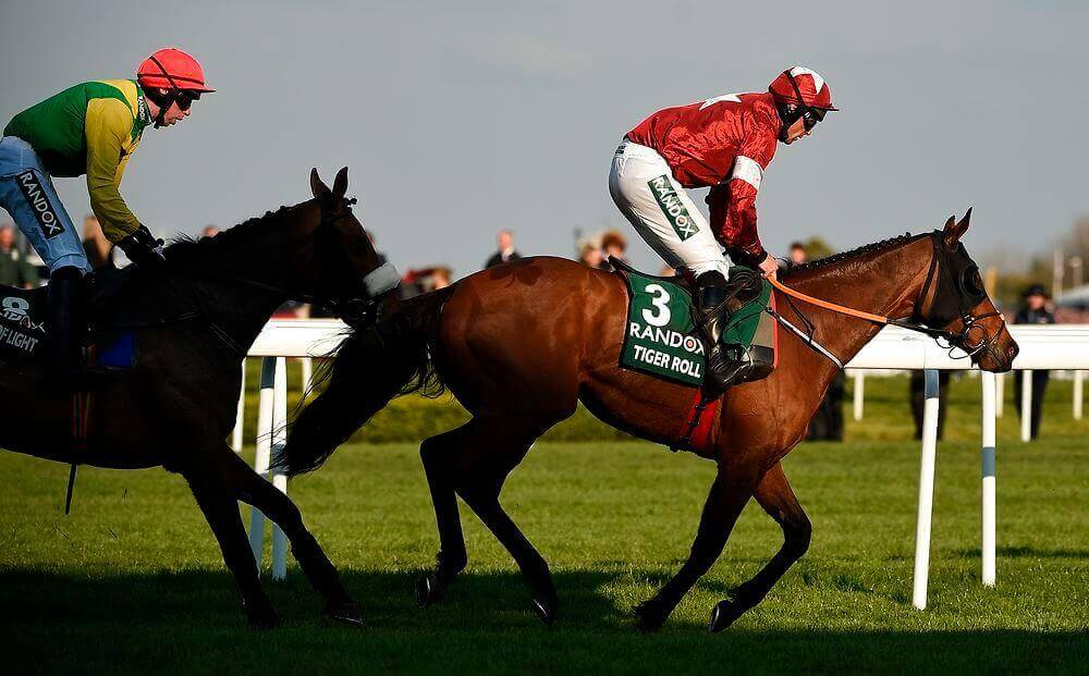 Magic of Light Tiger Roll Grand National